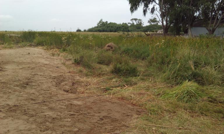 Venta de Lote Hasta 200 mts. en Las Toninas