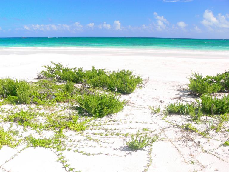 Mayan Sun Paradise, Venta de Lote en La Exposición o Calidonia   Panamá