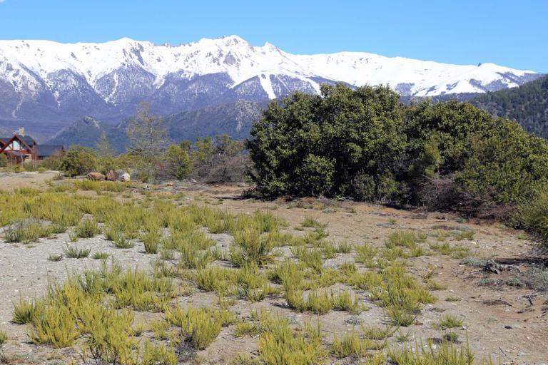 Venta de Lote Más de 500 mts. en San Carlos de Bariloche