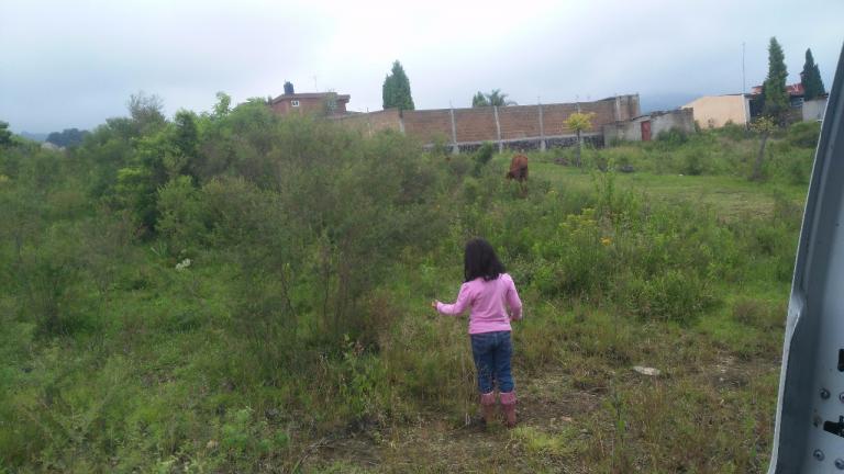 Venta de Lote en Pueblo Nepopualco   Totolapan