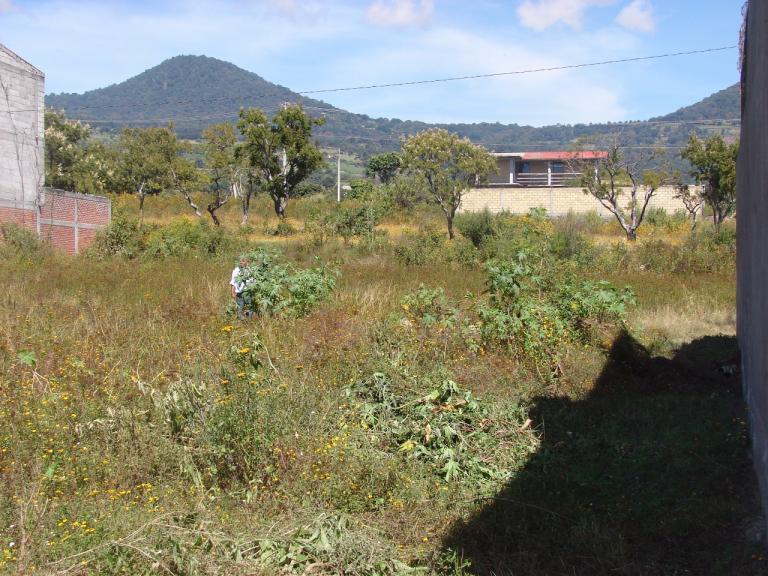 conain,  de Lote en Pueblo Nepopualco   Totolapan