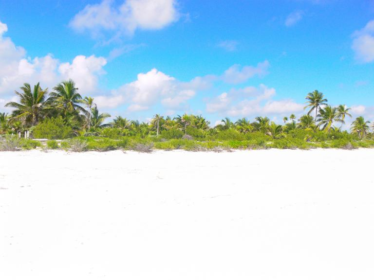 Mayan Sun Paradise,  de Lote en La Exposición o Calidonia   Panamá