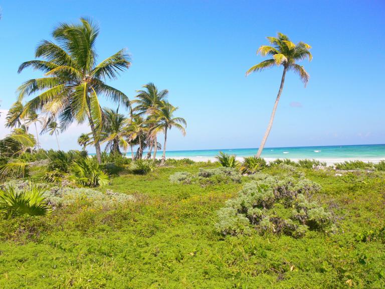 Mayan Sun Paradise,  de Lote en Santa Rosa   Colón
