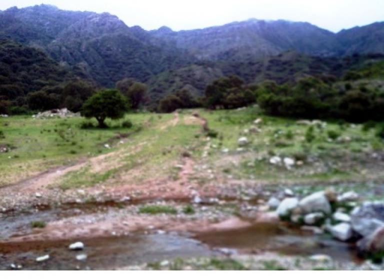 Consultora Integral San Luis,  de Campo en    Villa Larca