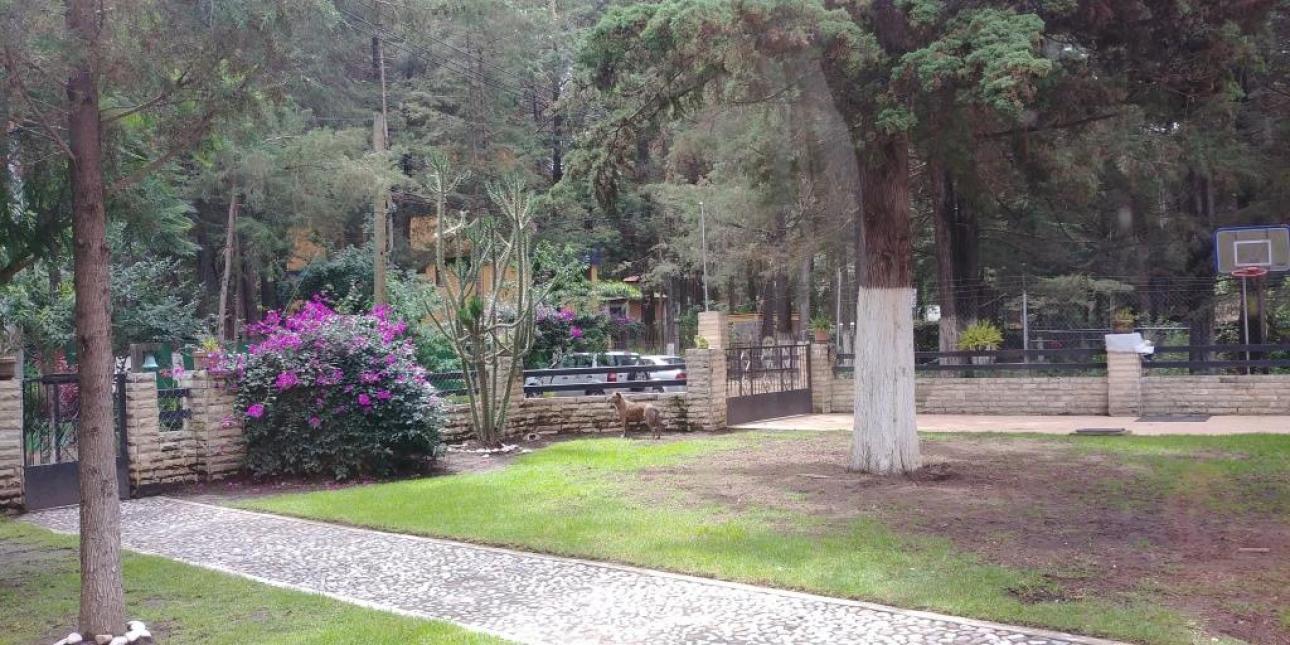 Horizontesrt,  de Casa en Fraccionamiento Bosque de Cuauhyocan   Amozoc